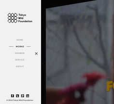 Tokyo Mild Foundation - Site of the Day July 18 2014