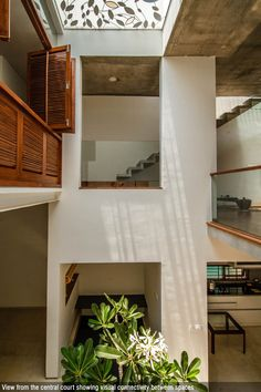 Share this on WhatsApp A Modern Tree House Cube Square Collage Studio ''Prasanna House is illustrative, where a dense urban context has been transformed into an intimate and tranquil living space Trees, leaves and nature are the essences of - a Cubes, Beautiful Tree Houses, House Beautiful, Beautiful Homes, Tree House Interior, Modern Tree House, Modern Windows, Interior Design Studio, House Rooms