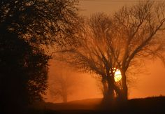 Misty autumn sunset on the Yorkshire Wolds...