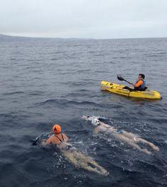 Mariel Hawley, nadando hacia la meta