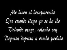 Manu Chao - Desaparecido con texto (with lyrics).avi