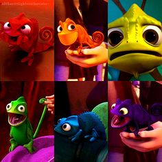 The many faces of Pascal