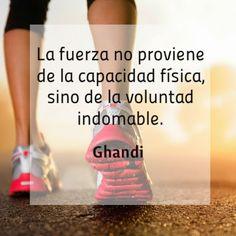 La fuera proviene de la voluntad indomable! #Fitness