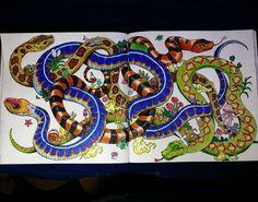 «#snakes from #animorphia »
