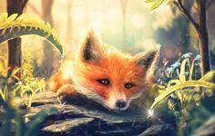 Wallpaper Fox, art, grass, muzzle, drop, fox, Fox, forest images for desktop, section живопись - download
