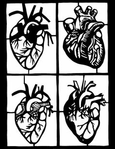 """Items similar to Original Paper Cutting - FOUR ANATOMICAL HEARTS - 8 x 10"""" - Medical Illustration on Etsy"""