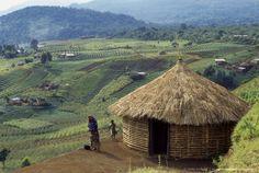 Rock art, african village Djombe, Virunga Mountains, Zaire, Africa