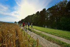 Thurgauer Fabelweg Steckborn Ermatingen | Foto: Iwan Fürst