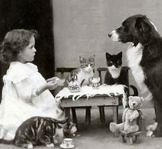 Vintage Children's Tea Parties #cats #dogs by esperanza