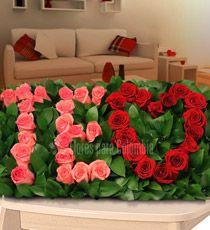 Flores para Colombia - Romance-Para enamorarla más