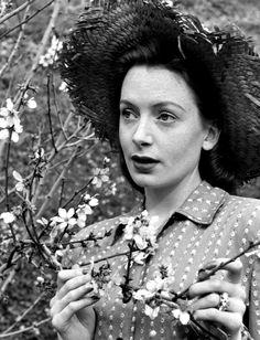 Deborah Kerr photographed by Bob Landry, 1947.