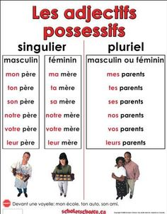 Resultado de imagen para la famille et les possessifs Common French Phrases, Basic French Words, How To Speak French, Learn French, French Flashcards, French Worksheets, French Expressions, French Teaching Resources, Teaching French