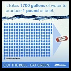 if you really want to save water... go vegan! #MyVeganJournal