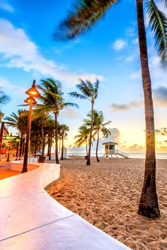 Florida Vacation Spots, Florida Travel Guide, Visit Florida, Florida Usa, Miami Quotes, Florida Quotes, Things To Do Orlando, Weekend In Miami, Beach Captions