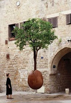 Na Rua, A Arte... Laranjeira Suspensa... Jaffa (1993)
