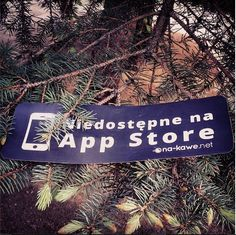 #notonappstore #nakawe #nakawenet #flowers #nature #real #poland #rzeszow #tree #eco #green #forest #walk #spring #nice #day  http://na-kawe.net