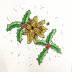 www.lucas2d.com #sketch #sketchbook #draw #drawing #ink #illustration #mandala #doodle #flower #flowers #flor #xmas #leaf #leaves #nature #natureza #folha #folhas #natural #artwork #beautiful #christmas #plant #plants #love #fun #graphic #like #desenho #art