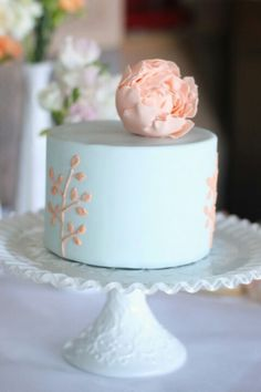 Elegant Simple Single Cake in Pale Blue and apricot!