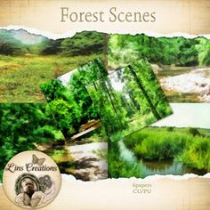 Forest Scenes  http://berryapplicious.com/store/index.php?main_page=product_info&cPath=1_156&products_id=5309&zenid=7750b146417b6e57e31ba6397f2a35e4