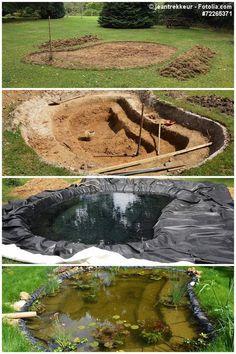 Gartenteich Anlegen Wasserpflanzen Teich, Gartenteiche, Vertikaler Garten,  Hinterhof, Gartenbau, Graben,