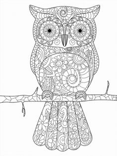 Poster of Owl on a branch coloring book for adults vector illustration. Anti-stress coloring for adult. Zentangle style bird. Black and white lines. Lace pattern #poster, #printmeposter, #mousepad, #tshirt