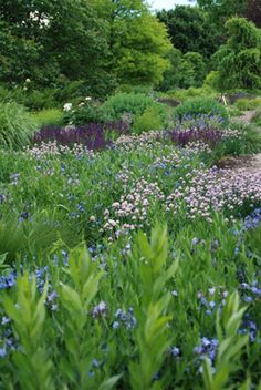 Garden Planning: Frost Dates and Frost-Free Growing Days