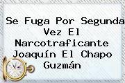http://tecnoautos.com/wp-content/uploads/imagenes/tendencias/thumbs/se-fuga-por-segunda-vez-el-narcotraficante-joaquin-el-chapo-guzman.jpg Chapo Guzman. Se fuga por segunda vez el narcotraficante Joaquín El Chapo Guzmán, Enlaces, Imágenes, Videos y Tweets - http://tecnoautos.com/actualidad/chapo-guzman-se-fuga-por-segunda-vez-el-narcotraficante-joaquin-el-chapo-guzman/