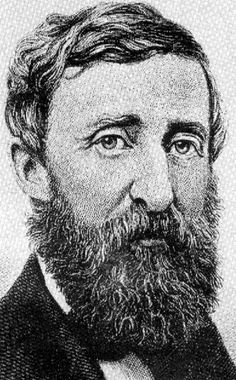 """""""[T]he cost of a thing is the amount of what I will call life which is required to be exchanged for it, immediately or in the long run.""""   ~ Henry David Thoreau, Walden"""