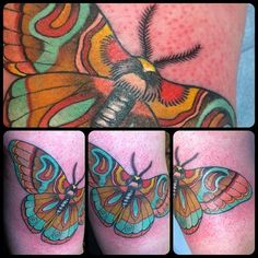 guendouglas:  Invented moth ❤ back of arm  #moth #butterfly #tattoo  magnumopustattoos.co.uk