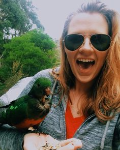 """Bus driver: """"Technically we're not supposed to feed them since they're wild but I brought along some bird seed just in case.""""        #parrot #wildlife #feeding #onmyhand #respectwildlife #australia #aussie #oz #great #ocean #road #GreatOceanRoad #wildlife #daytrip #tour #abroad #travel #blog #study #studyabroad #explore #adventure #blogging #travelblog #travelblogging #outdoors #wildaustralia #hornetsabroad #tour #victoria #VictoriaAus #VictoriaAU by loverlyashley"""