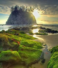 +++. . . Second Beach Haystack, Olympic national Park, Washington State #travel #washington #usa