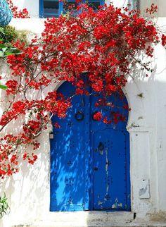 Doors style in Sidi Bou Said, Tunisia. – angela landim 2 – Join in the world of pin Old Doors, Windows And Doors, Arched Doors, Beautiful Flowers, Beautiful Places, Sidi Bou Said, Unique Doors, Bougainvillea, Doorway