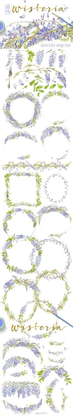 Like Vintage Botanicals, all items are recognizable by species and stylishly authentic, and (for storytelling...) you may find different angles & stages of development, as they are painted after life. All come with transparent background, are cleaned by hand to give you great technical quality . And here is: WISTERIA - Design Pack!