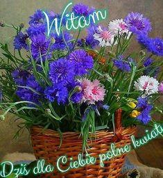 Love Flowers, Beautiful Flowers, Flower Pictures, Flower Pots, Flower Baskets, Still Life, Magnolia, Flower Arrangements, Colours