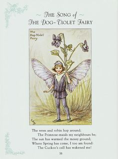 I Found A Reprint Of Book Cicely Mary Barker S Spring Fairies At