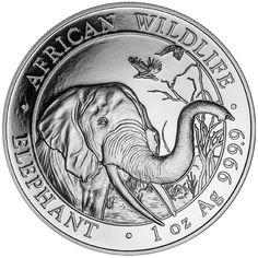 The 2018 Somalian Elephant 1oz Silver Coin features a close-up of an adult elephant with its trunk reaching out towards the edge of the coin, with two birds in flight and a tree in the background. Details of the coins weight and fineness also appear in the design. The edge of the coin reads 'AFRICAN WILDLIFE' and 'ELEPHANT'. The obverse of the coin bears the Somalian Coat of Arms and the date along with the monetary value. Minted at the Bavarian State Mint in Germany.