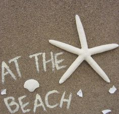 At the Beach - love this!