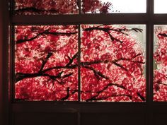 Spectacular Cherry Blossom Murals Made with Hand Prints - My Modern Metropolis