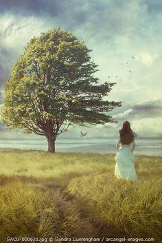 www.arcangel.com - woman-in-white-dress-walking-in-field