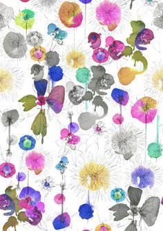 I need a whole room in this fabric.  4 walls.  I'd even take an Egg chair.  Dahlia Cushion @ Imogen Heath