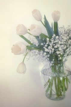 White Flower Bouquet Photograph  tulips babys