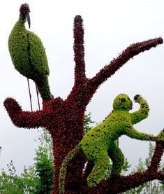 Impressive: The animal sculptures will continue to grow while on display.  #topiary #green