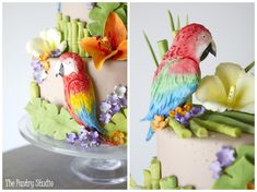 Jimmy Buffet themed Wedding Shower Cake featuring Parrots,Tropical Florals and Sugar-Paste Bamboo from The Pastry Studio:Daytona Beach,Fl. Wedding Shower Cakes, Wedding Cakes, Luau Cakes, Gourmet Cookies, Cake Wrecks, Sugar Paste, Specialty Cakes, Dessert Bars, Sugar Cookies