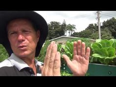 Siembra Vertical - YouTube Anne Hathaway Pixie, Permaculture, Green Beans, Youtube, Gift, Past Tense, Future Tense, Vertical Vegetable Gardens, Medicinal Plants