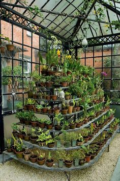20 trendy home garden greenhouse Room With Plants, House Plants Decor, Indoor Garden, Indoor Plants, Home And Garden, Herb Garden Design, Diy Garden Decor, Backyard Greenhouse, Backyard Landscaping
