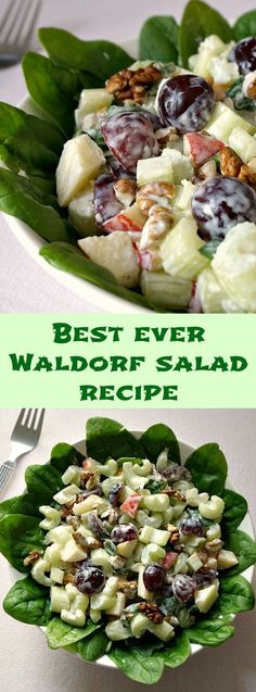 Waldorf Salad with a light yogurt and mayo dressing, a healthy salad recipe for the whole family. Gluten free, low in calories, low carb, this salad is absolutely delicious as a side dish for your summer BBQ. Easy Salads, Healthy Salads, Summer Salads, Healthy Eating, Summer Bbq, Spicy Recipes, Vegetarian Recipes, Cooking Recipes, Healthy Recipes