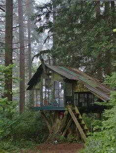 Tree house cabin in the woods. I love the tin roof
