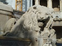 Church of st Suplice - lion