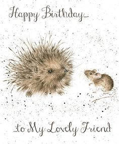 Hedgehog Birthday Card - Wrendale Designs:
