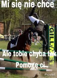 Star Butterfly, Shakira, Horse Riding, Aesthetic Clothes, Picsart, Wattpad, Horses, Memes, Horse